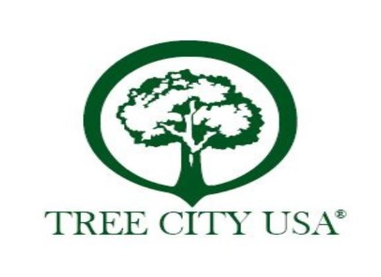 tree city logo